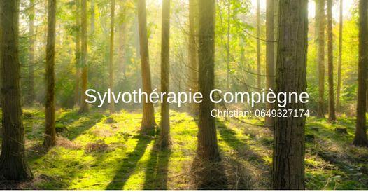 Sylvothérapie Christian Decamme